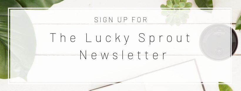 Email Signup Header